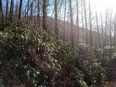 Robbinsville Residential Lots & Land For Sale: 00 Beech Creek