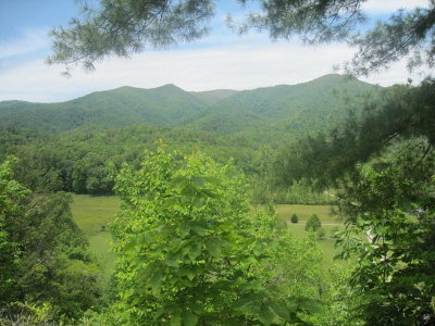 Hayesville Residential Lots & Land For Sale: 142 Chairmaker Drive