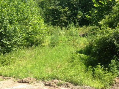 Marble Residential Lots & Land For Sale: 262 Zekes Trail