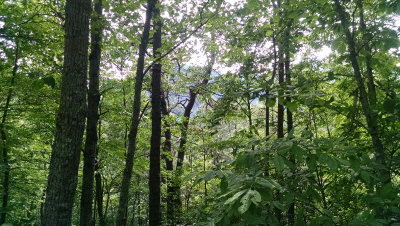 Robbinsville Residential Lots & Land For Sale: L22 Stecoah Development