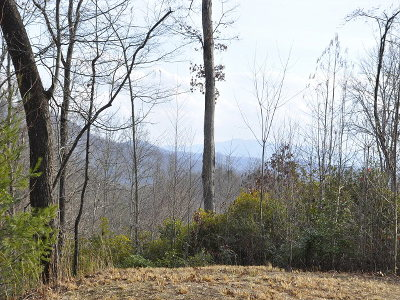 Murphy Residential Lots & Land For Sale: Alto Vista Road