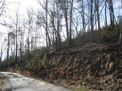 Brasstown Residential Lots & Land For Sale: Lot 2 Brasstown Creek Ridge