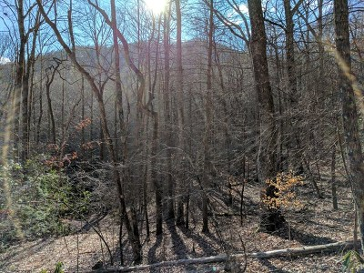 Robbinsville Residential Lots & Land For Sale: Little Snowbird Road