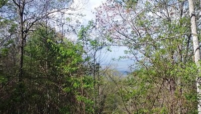 Murphy Residential Lots & Land For Sale: Lot 9 Cherokee Mountain Trail