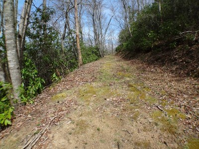 Topton Residential Lots & Land For Sale: 00 Owenby Rd