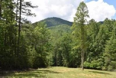 Brasstown Residential Lots & Land For Sale: 2000 Pine Log Church Rd.