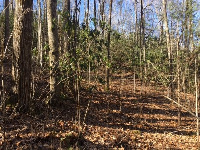 Andrews Residential Lots & Land For Sale: Whispering Pines Hollow