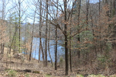 Topton Residential Lots & Land For Sale: Lot5,6,7 Indian Lake Road