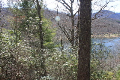 Topton Residential Lots & Land For Sale: Lot#3 Indian Lake Road