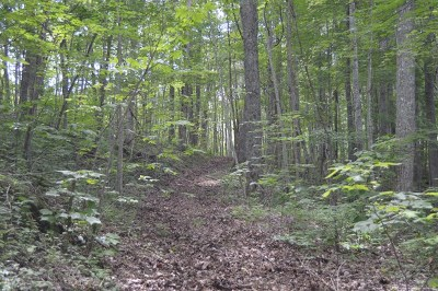 Topton Residential Lots & Land For Sale: 00 Otter Creek Road