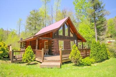 Robbinsville Single Family Home For Sale: 4700 Little Snowbird Rd