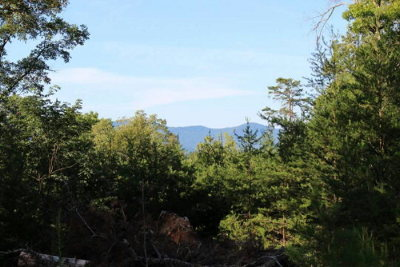 Brasstown Residential Lots & Land For Sale: Lot 2 Pheasant Trail