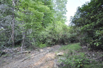 Andrews Residential Lots & Land For Sale: Granny Squirrel Drive