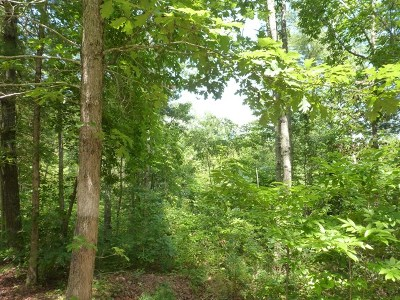 Brasstown Residential Lots & Land For Sale: Lot #35 Trillium Heights
