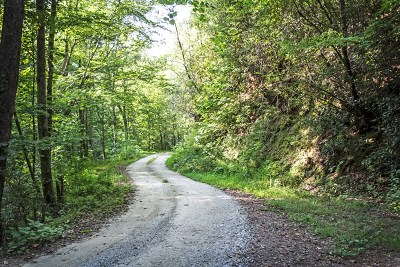 Andrews Residential Lots & Land For Sale: 00 Bluegrass Lane