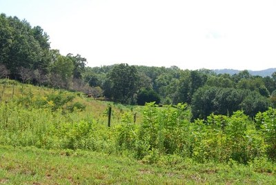 Brasstown Residential Lots & Land For Sale: 00 Weber Way