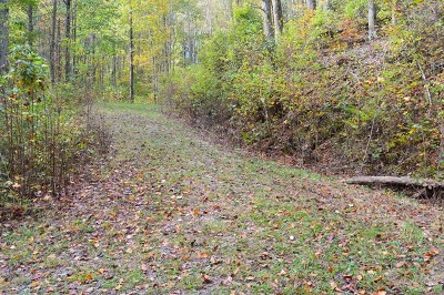 Topton Residential Lots & Land For Sale: 00 Indian Lake Road