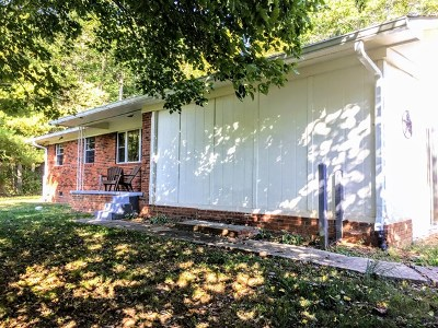 Brasstown Single Family Home For Sale: 227 Payne Road
