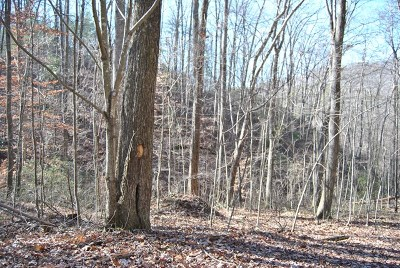Murphy NC Residential Lots & Land For Sale: $18,900