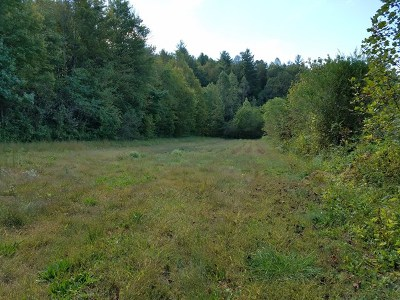 Marble Residential Lots & Land For Sale: Lot 65 Vengeance Creek Road