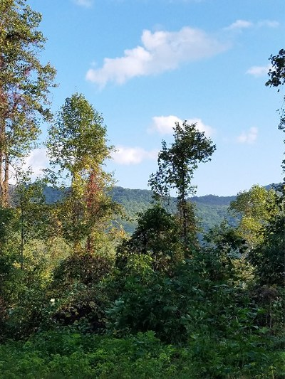 Murphy Residential Lots & Land For Sale: 3735 Owl Creek Road
