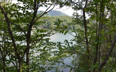 Hayesville Residential Lots & Land For Sale: Hidden Cove Lane