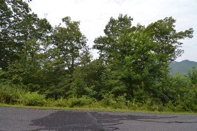 Hayesville Residential Lots & Land For Sale: 30 J Ashe Branch
