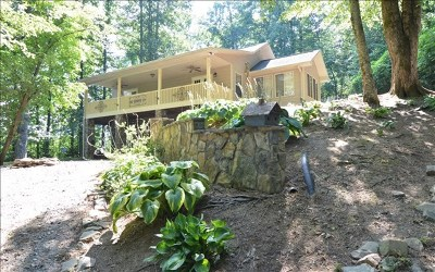 Hayesville Single Family Home For Sale: 67 Walker Point Rd