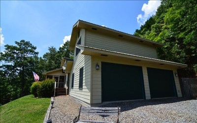 Hayesville Single Family Home For Sale: 387 E Double Knobs Drive