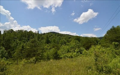 Hayesville Residential Lots & Land For Sale: Matheson Cove Rd