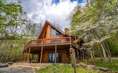 Hayesville Single Family Home For Sale: 733 South Brooks Cove