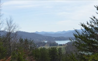 Hayesville Residential Lots & Land For Sale: Lot 11 Dan Knob Subdivision
