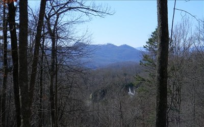 Hayesville Residential Lots & Land For Sale: Lot 44c Ashe Branch Circle