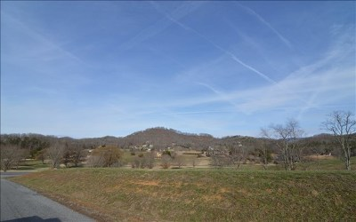 Hayesville Residential Lots & Land For Sale: Lot 1m Mountain Harbour