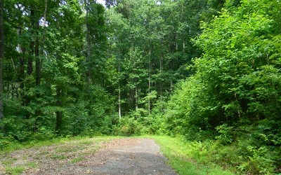 Hayesville Residential Lots & Land For Sale: Lot 18 Sutton Cove