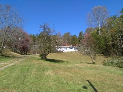 Murphy Single Family Home For Sale: 1669 Hiwassee Dam Access