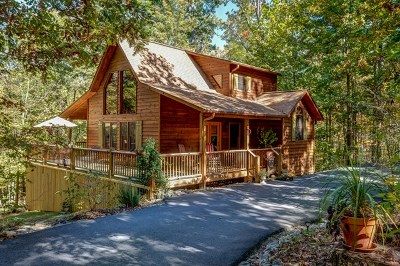Brasstown Single Family Home For Sale: 607 Weber Way