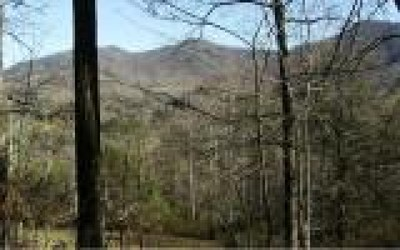 Hayesville Residential Lots & Land For Sale: 5a Anns Lane