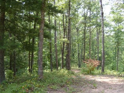 Murphy Residential Lots & Land For Sale: Lot 34 Vista Hills Road