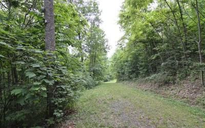 Hayesville Residential Lots & Land For Sale: 15 The Springs