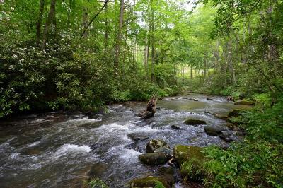 Robbinsville Residential Lots & Land For Sale: 00 Little Snowbird Road