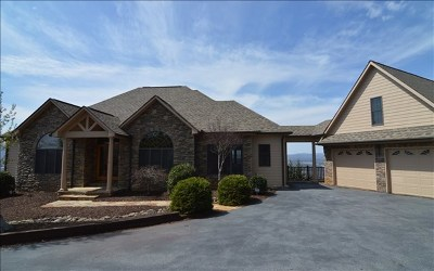 Hayesville Single Family Home For Sale: 2197 Carlin Road