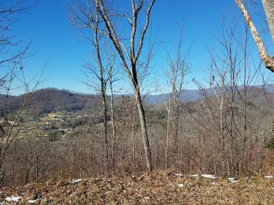 Hayesville Residential Lots & Land For Sale: Lot 36-M Ridges Overlook