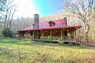 Hayesville Single Family Home For Sale: 90 Tate Branch Lane