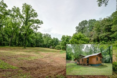 Murphy NC Single Family Home For Sale: $175,000