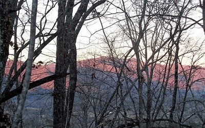 Hayesville Residential Lots & Land For Sale: 20.95 Town Mountain Road