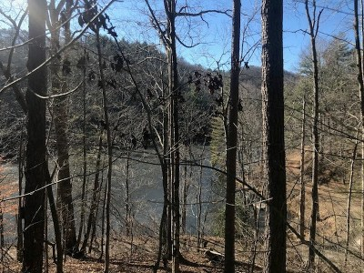 Robbinsville Residential Lots & Land For Sale: Lot 9 Lake Front Dr
