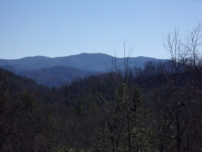 Topton Residential Lots & Land For Sale: Pine Mountain Drive