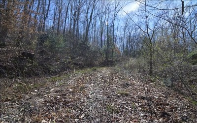 Hayesville Residential Lots & Land For Sale: Old Hwy 64 East