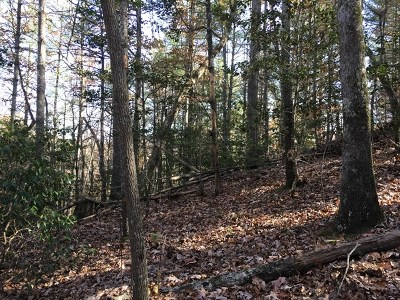 Murphy Residential Lots & Land For Sale: 356 Hilltop Road
